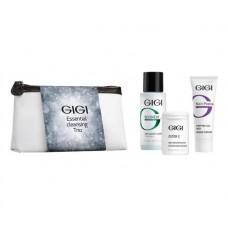 Подарочный набор Чистая кожа 3 препарата+ косметичка - OS Essential Cleansing Trio GIGI