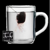 Эрбалмикс Мажистраль Чай для Красоты Тела - Ella B...
