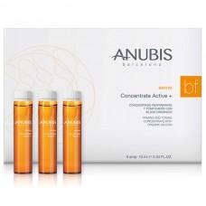 Укрепляющий тонизирующий концентрат - Anubis B&Firm Concentrate Active+