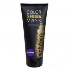 Маска оттеночная - Artego Color Shine Mask - Blueberry