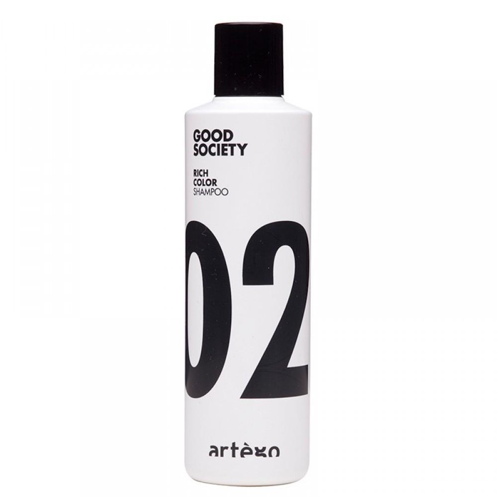 Шампунь для крашеных волос - Artego Rich Color '02