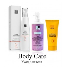 Body Caree